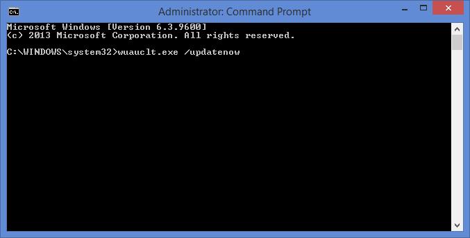 Команда wuauclt.exe /updatenow в CMD